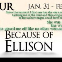 Because of Ellison by M.S. Willis Blog Tour