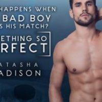 Something So Perfect by Natasha Madison Teaser